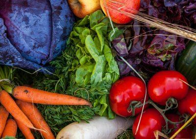 Salat, Gemüse, Obst, Karotte, Tomate, Kohl, Gurke, Rettich